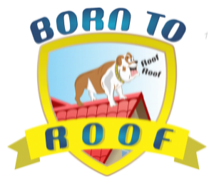 Born To Roof